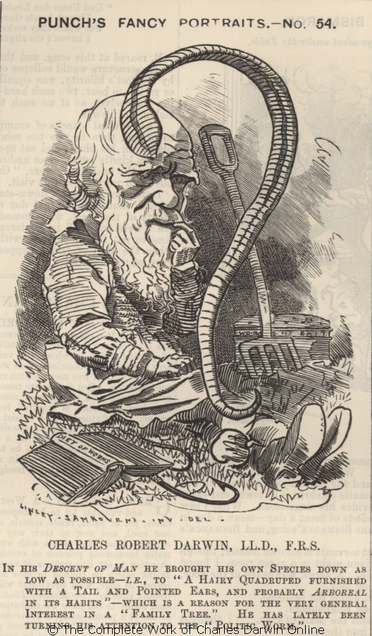 Image of Darwin and an Earthworm from 19th century Punch