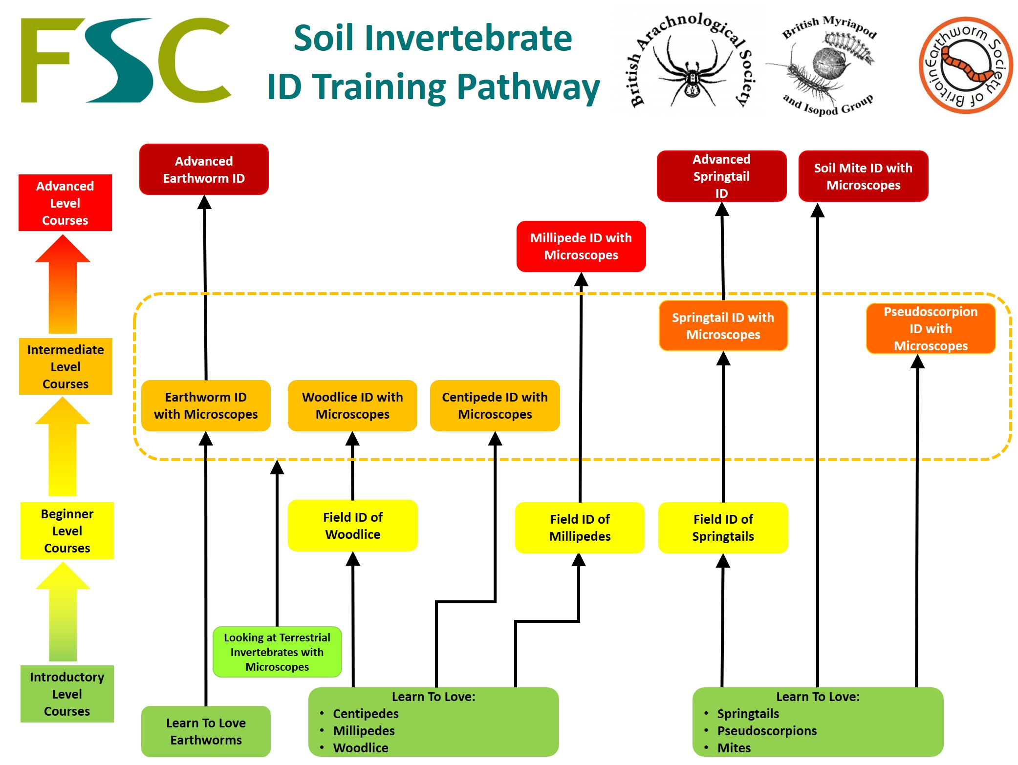Soil Invertebrate ID Training Pathway