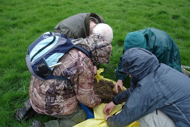 Group of people collecting earthworms