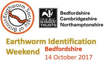 Bedfordshire ID Course