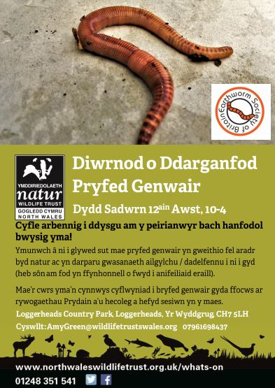 Event Poster (Welsh)