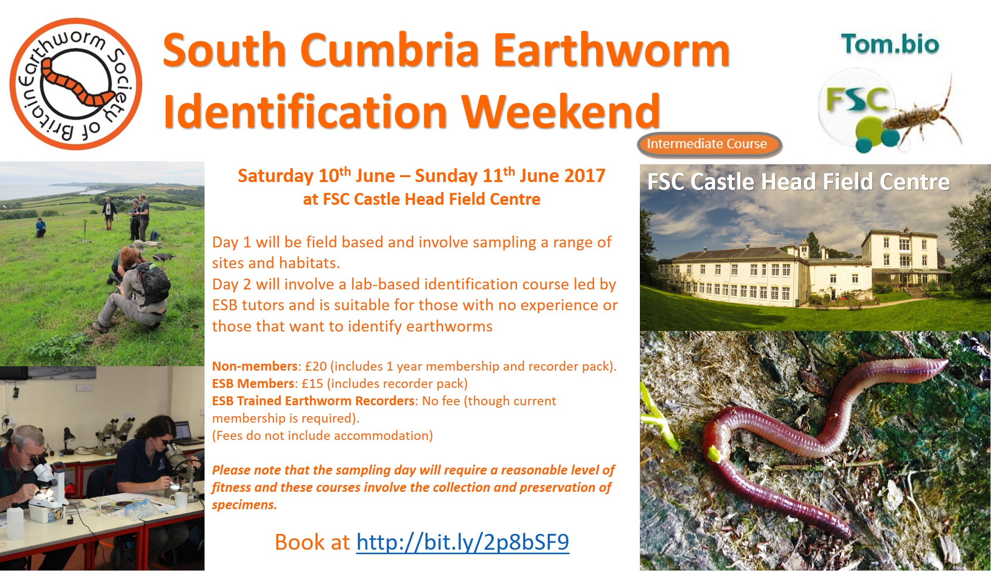 South Cumbria Earthworm ID Weekend 2017